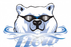FLOW Swimmers Logo