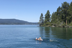 Kate Swimming in Flathead Lake