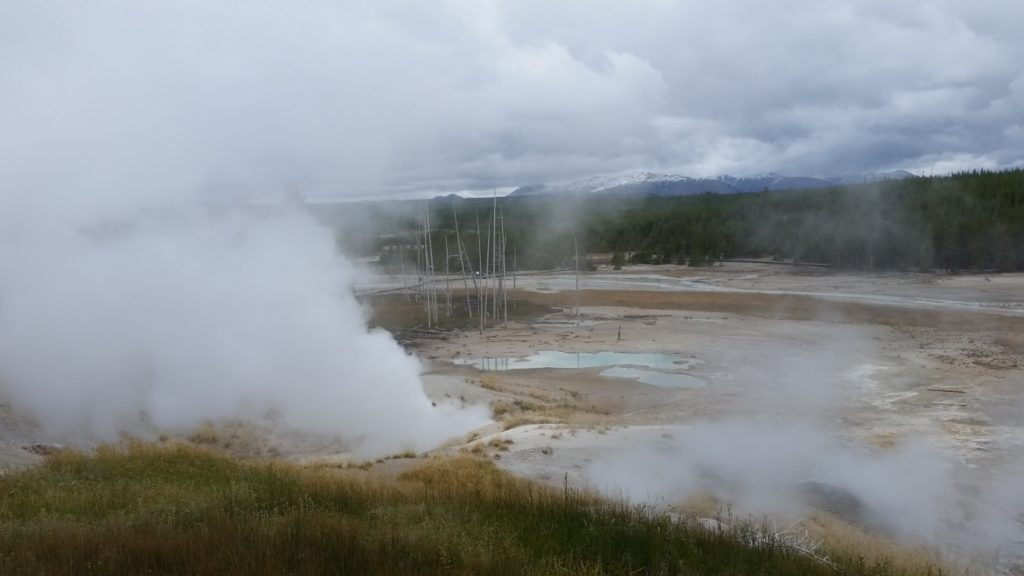 YellowstoneNPNorrisGeyerBasin