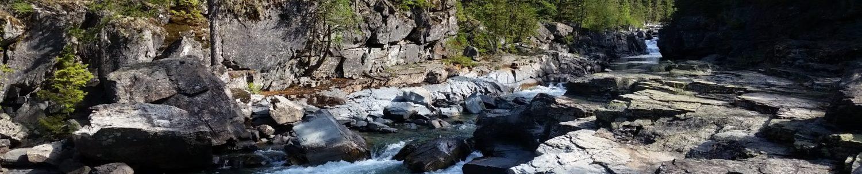 Montana Masters Swimming